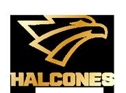 copa-halcon-mon